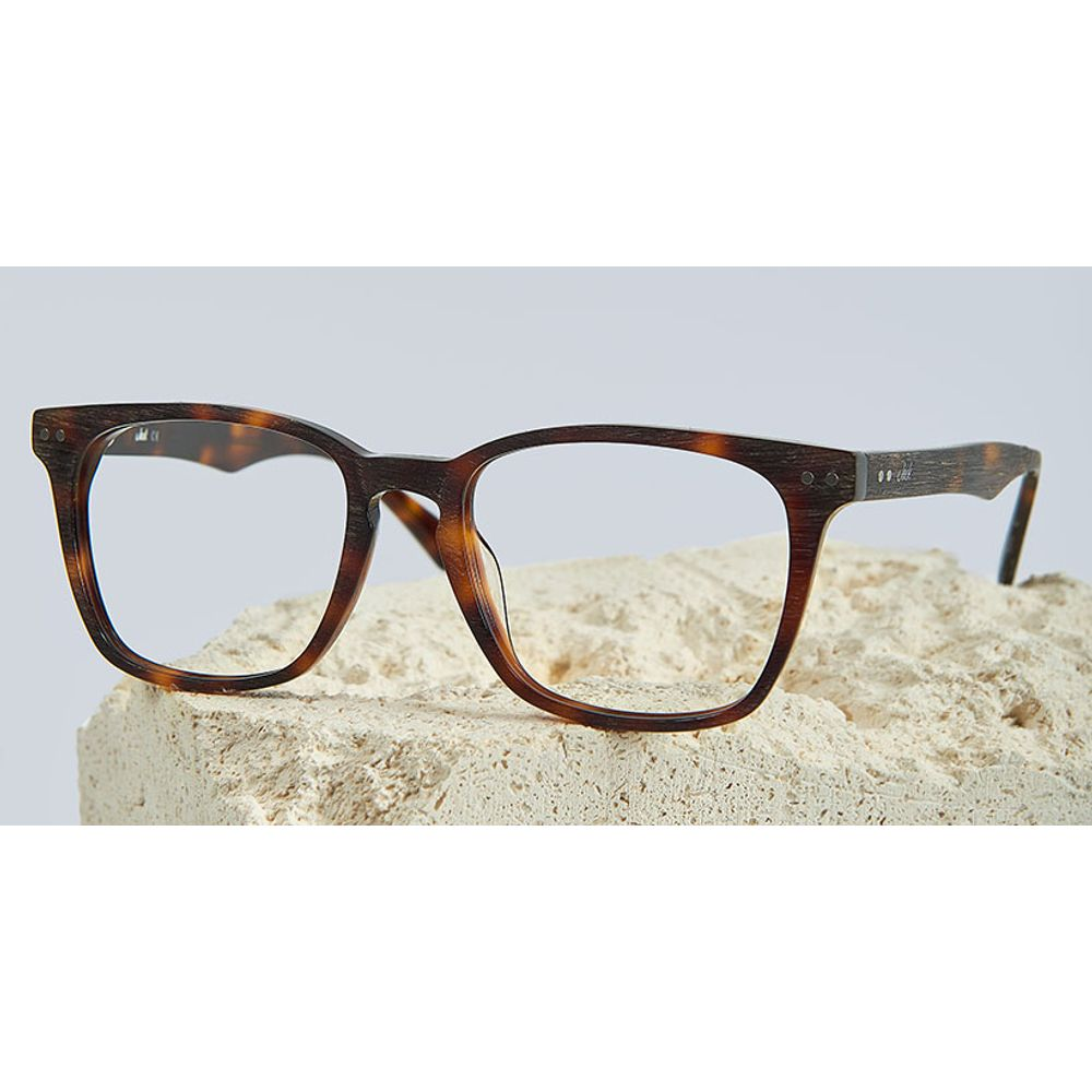 lentes opticos jack cafe tortuga nuevo